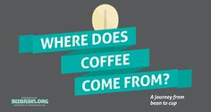 Where does coffee come from? A journey from bean to cup. < brilliant interactive infographic