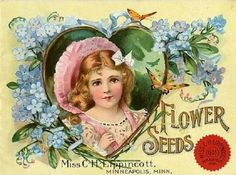 """Miss C H Lippincott Catalog 1903  Lippincott began publishing her picture in her catalog in 1899, explaining that """"a number of seeds men (shall I call them men?) have assumed women's names in order to sell seeds.""""  White countered a few years later with the protest, """"I am a real live woman and I give personal attention to my business."""""""