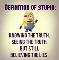 Image result for definition of stupid quote