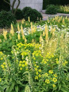 RHS Chelsea Flower Show 2014 - Luciano Giubbilei's Laurent-Perrier Garden…