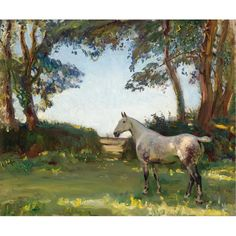 """""""The Grey Mare"""" by Sir Alfred James Munnings. Visually stunning. The horse is depicted as a living being rather than an anatomical study. Love the purple in the grey coat."""