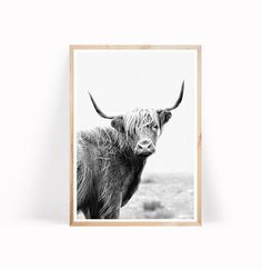 Highland Cow Printable Art  Youre welcome to have a look at our selection of modern, contemporary wall art. I hear cactus prints are quite popular now. ••• YOU ORDER ••• With your order you will receive 5 high resolution JPG images  ♦️ 4:5 ratio file for printing:  Inch: 4x5, 8x10, 11x14, 12x15, 16x20  Cm: 10x12, 20x25, 28x35, 30x38, 40x50  ♦️ 3:4 ratio file for printing:  Inch: 6x8, 9x12, 12x16, 15x20, 18x24  Cm: 15x20, 22x30, 30x40, 38x50, 45x60  ♦️ 2:3 ratio file for p