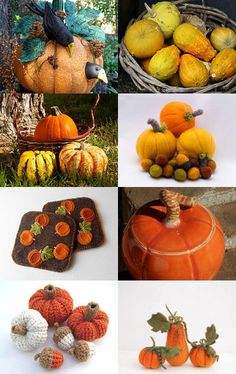 Fall Harvest Pumpkins Squash Gourds by Dee Brochu on Etsy