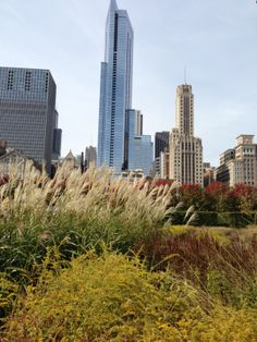 Lurie Gardens Chicago IL
