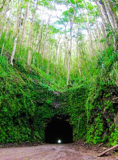 Kauai (Nawiliwili), Hawaii. Take an ATV through the half mile tunnel that once served as a shortcut for cane trucks between the Koloa sugar mill and the Nawiliwili Harbor.