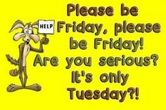 Are you serious? It's only Tuesday? tuesday tuesday quotes tuesday pictures tuesday images please be friday wheres friday Humor Funny Good Morning Quotes, Good Day Quotes, Its Friday Quotes, Morning Humor, Work Quotes, Daily Quotes, Quote Of The Day, Wisdom Quotes, Lol So True
