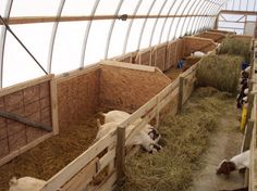 Livestock Shelters   Multi Shelter Solutions