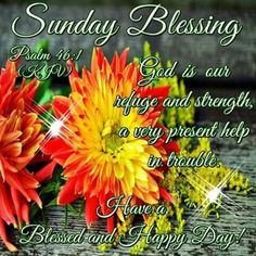 Sunday Blessing, Psalm Have a Blessed and Happy Day! Good Night Blessings, Morning Blessings, Happy Wednesday, Happy Day, Psalms 46 1, Good Sunday Morning, Good Night Everyone, True Love Waits, Waiting For Love