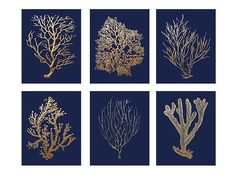 Navy+Gold+Art+Gold+Coral+Prints+On+Navy+Navy+by+BeachHouseGallery,+$38.00