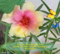 """""""É isso ai... Um vendedor de flores ensinar seus filhos a escolher seus amores."""" (Ana Carolina)  Da Música: É Isso Aí (Blower's Daughter) Composição: Damien Rice / Versão brasileira: Ana Carolina"""