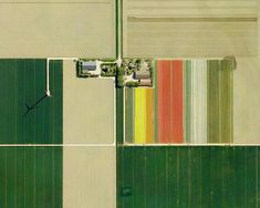So, what do you say to a Mondrian approach to your garden?  No??  (just kidding)    Dutch Tulip Fields by Mishka Henner, 2012