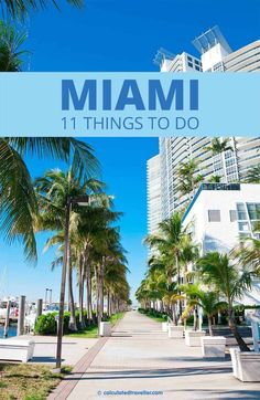 Known for its vibrant, robust, and rhythmic culture --- Everything from wildlife to wild nights await you in our list of 11 things to do in Miami Florida. Florida Usa, Visit Florida, Florida Travel, Travel Usa, Miami Florida Vacation, Florida Keys, South Florida, Places To Travel, Places To Go