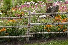 garden shrubs beginning with h Diy Garden Fence, Garden Shrubs, Garden Gates, Country Fences, Rustic Fence, Log Fence, Rail Fence, Rustic Gardens, Outdoor Gardens