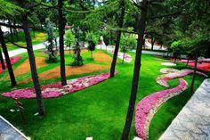 Emirgan Korusu - Sonbahar #istanbul #park