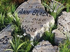 Another favorite ...broken tombstone with instructions. Love the faux overgrown grass! [Blackstone Cemetery Hector Turner]
