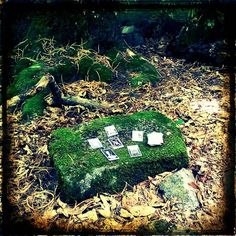 Practicando tarot en el bosque.  Tarot reading at the forest. #tarot #witchcraft #forest #pagan #brujeria #paganos