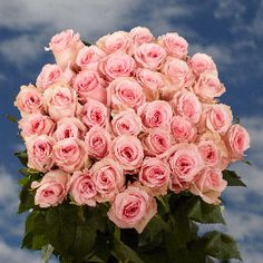 GlobalRose 50 Fresh Cut Pink Roses - Inches Long Stem - Fresh Flowers For Birthdays, Weddings or Anniversary. Hot Pink Roses, Beautiful Pink Roses, Yellow Roses, Next Day Delivery Gifts, Mothers Day Roses, Wholesale Roses, Anniversary Flowers, Birthday Roses, Types Of Roses