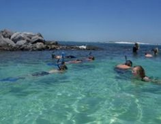 Snorkeling Tours in Destin, Florida - Local Snorkeling Experts