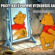 Když přijdeš z prvního rande ty. Winnie The Pooh, Disney Characters, Fictional Characters, Teen, Humor, Funny, Cute, Tiny Tiny, Winnie The Pooh Ears