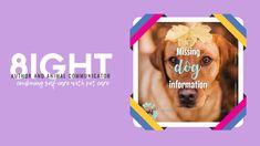 Missing Dog Information – 8ight Author and Animal Communicator Socializing Dogs, Dog Information, Weather Day, Purebred Dogs, Dog Runs, Dog Travel, Losing A Dog, Extreme Weather, Id Tag