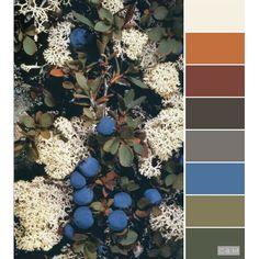 Paint Color Palettes, Colour Pallette, Colour Schemes, Color Trends, Color Patterns, Color Combinations, Paint Colors, Color Splash, Color Pop