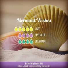 "0 Likes, 2 Comments - Darlene Ryan (@essentially_loving_oils) on Instagram: ""Mermaid Wishes - Diffuser Blend . ""Darwin may have been quite correct in his theory that man…"""