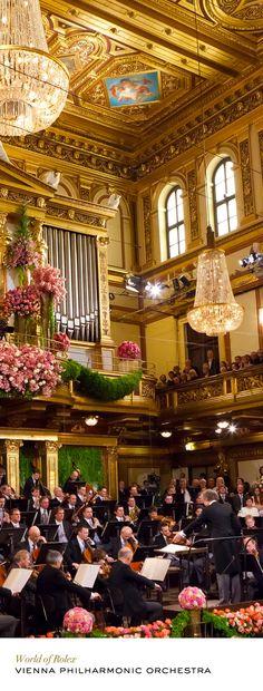 "seasonsofwinterberry: "" Vienna Philharmonic Orchestra """