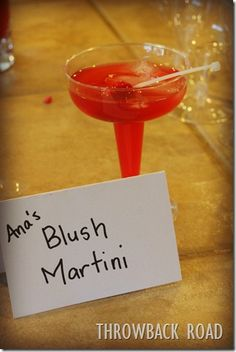 Anna's Blush Martini  Serves 2     2 Shots Pink Lemonade Vodka…I used this kind UV Pink Lemonade Vodka   2 Shots Citrus Vodka…any brand will do   1 Shot Raspberry Mixer or a raspberry puree   1 Shot Lime Juice     Combine ingredients, shake with ice in a martini shaker, pour into glass and serve with a zip tie raspberry