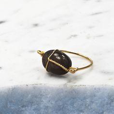Image of Le scarabée Obsidienne