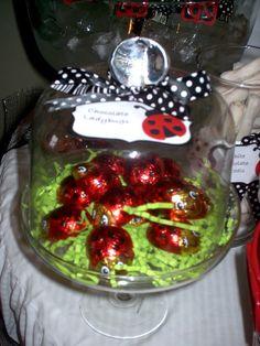 Chocolate ladybugs under glass.