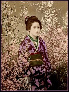 geisha - vintage photos of japan Japanese Geisha, Japanese Beauty, Vintage Japanese, Japanese Art, Japanese Flowers, Vintage Pictures, Old Pictures, Photos Du, Old Photos