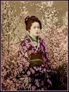THE GEISHA by Okinawa Soba, via Flickr