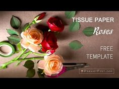 This is the tutorial and free template to make tissue paper Rose flower. I will share you step by step on how to make tissue paper flowers. Paper Flowers Roses, Tissue Paper Roses, Crepe Paper Flowers Tutorial, Paper Flowers Craft, Tissue Paper Crafts, Flower Crafts, Fabric Flowers, Paper Quilling For Beginners, Paper Plants
