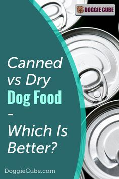 Canned vs dry dog food - Which is better? Before you decide on getting the best canned dog food or DIY some homemade dry dog food for your pet's diet, it's a good idea to compare both options. Canned Dog Food, Dry Dog Food, Dog Nutrition, Dog Diet, Medical Problems, Dog Care Tips, Homemade Dog Food, Nutritious Meals, No Cook Meals