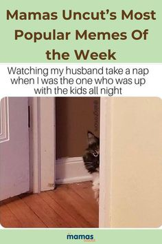 35 Spectacular Top Memes of the Week from Mamas Uncut Let's all take a moment to enjoy some excellent memes about parenting. It's not easy but these memes will help make you feel a little bit better about it. #Humor #Parentinghumor #memes