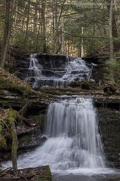 Waterfall along Bear Run, Tioga County, PA.