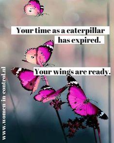 Caterpillar, Wings, Blog, Feathers, Ali
