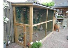 Backyard Chicken Coop Plans, Diy Chicken Coop, Chickens Backyard, Pet Bird Cage, Bird Cages, Quail Coop, Bird Aviary, Diy Stuffed Animals, Farm Life