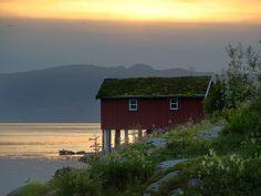 Saltstraumen, Arctic Norway   by artic pj