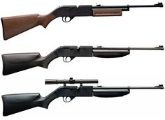 Air rifles for post TEOTWAWKI food procurement