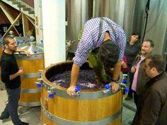 Carlo Stepping his Game Up. #winewednesday  www.altiramisu.com