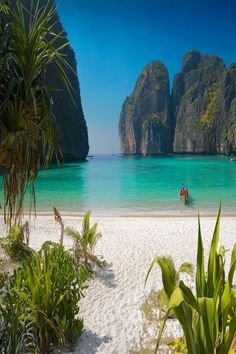 Thailand's Phi Phi island near Phuket (where The Beach was filmed). Best beach ever! Beaches In The World, Places Around The World, Oh The Places You'll Go, Places To Travel, Places To Visit, Phi Phi Island, Dream Vacations, Vacation Spots, Jamaica Vacation