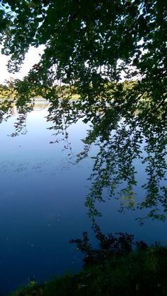 Silhouettes, beautiful colours and magical reflections of the leaves in water. #photography #lake #reflection #autumn