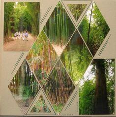 Bambouseraie de Prafrance : Couleurs des cannes de bambou