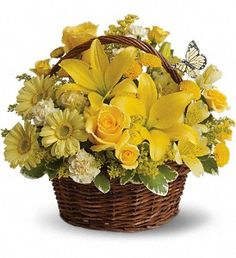 Wishes do come true, by the basketful, actually. This delightful arrangement is so full of sunny blossoms, it even includes a pretty yellow ...