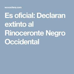 Es oficial: Declaran extinto al Rinoceronte Negro Occidental