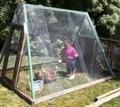 Repurposed Swing Set Turned Chicken Coop---might work for a small greenhouse too