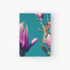 Magnolia Flower, My Notebook, Journals, Aqua, My Arts, Sky, Art Prints, Printed, Awesome