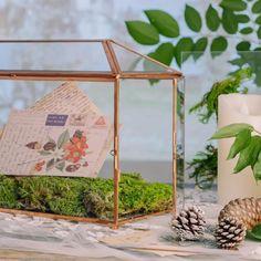 rose gold card box Terrarium Containers, Glass Terrarium, Terrariums, Thanks Card, Planter Ideas, Card Box Wedding, Congratulations Card, Garden Planters, House Warming