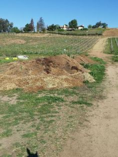 How to compost your barn's manure! http://www.proequinegrooms.com/index.php/tips/green-horsekeeping/composting-basics-at-the-barn/